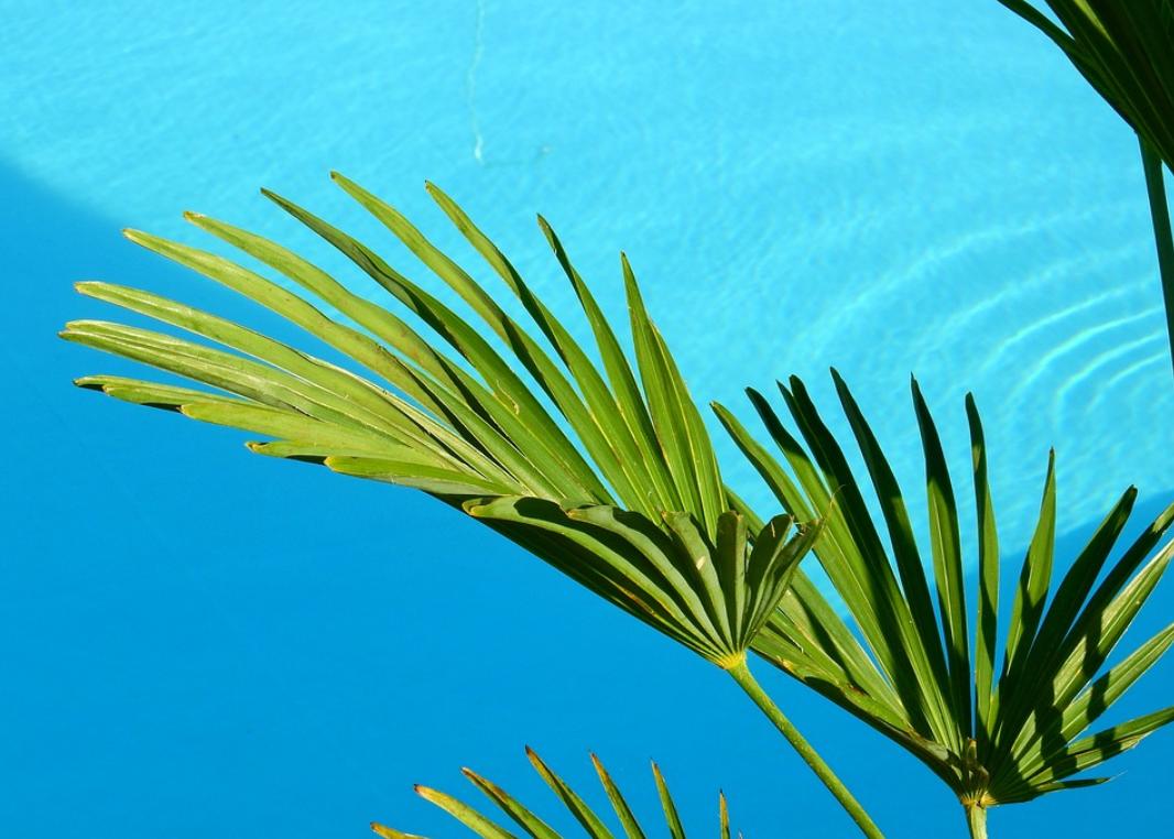 dovolená u vody