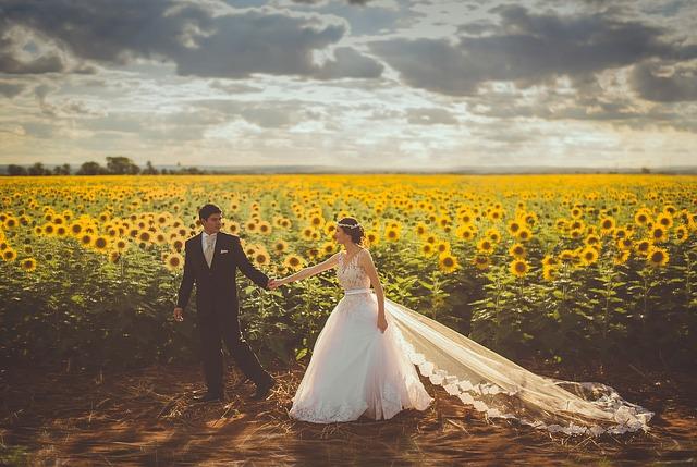 novomanželé u pole