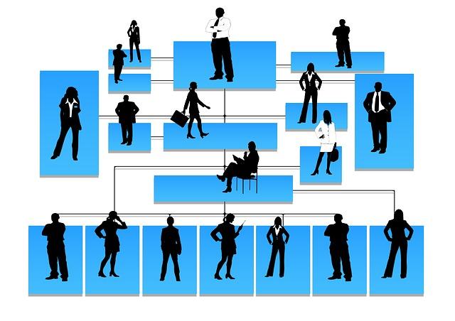 hierarchie společnosti