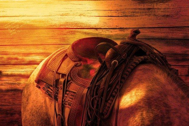 koňský hřbet + sedlo